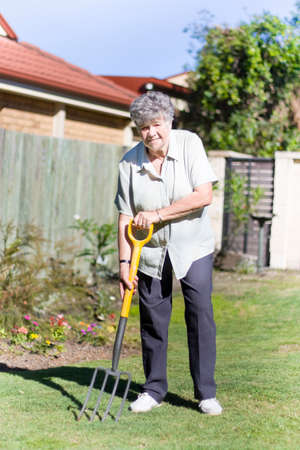 elderly woman: A Older Woman Or Pensioner Gardener Working In Her Garden With A Pitchfork Getting The Land Ready For Planting