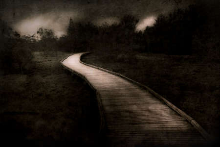 Weathered Landscape Photo Of A Baron Journey Into A Dark Woodland Following A Unknown Wooden Path
