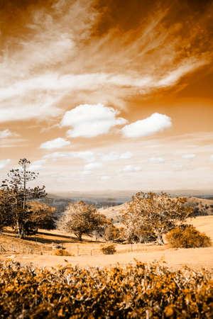 hinterland: Sepia Photograph Of A Picturesque Australian Farm Landscape Scene.  Taken Maleny Hinterland, Sunshine Coast, Queensland, Australia On 1st January 2013