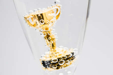 caballo bebe: Primer del pequeño trofeo de Copa de Melbourne en la copa de champaña. evento de carreras de caballos de Australia