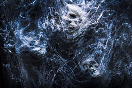 cobwebs: Evil blue halloween scene on a group of monster skulls bound up in cobwebs. Tangled in fear