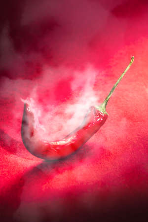 Creative spices art on a smouldering red chili in steaming hot smoke. Spicy food artwork