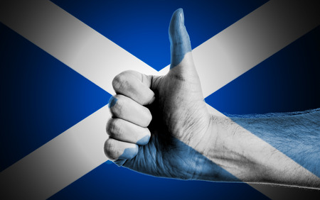 Flag Of Scotland Painted On A Man photo
