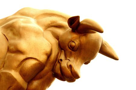 business metaphore: Bull economy