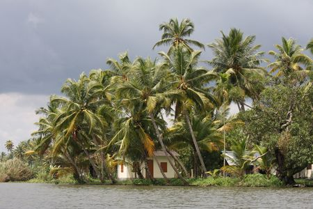 south india:  in tropical surroundings near Allepey in the Kerala backwaters in South India