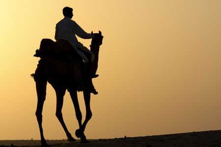 thar: Silhouette of a camel rider in the desert at sunset.