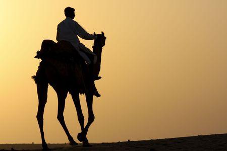 camello: Silueta de un jinete de camellos en el desierto al atardecer.