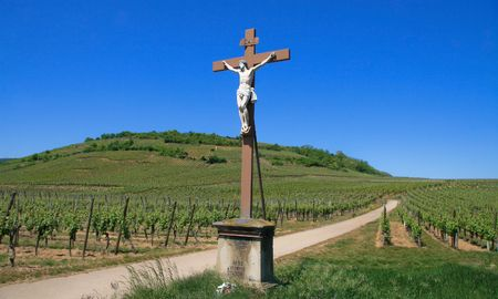 des vins: Cross in a vineyard at the Route des Vins in Alsace, France (made in 1896)