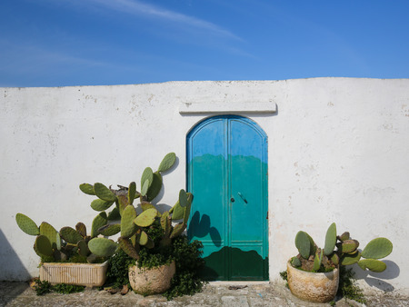 south italy: White wall, painted door and cactusses in the medieval town Ostuni in Puglia, South Italy.