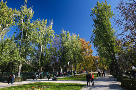 parque del buen retiro: MADRID, SPAIN - NOVEMBER 14, 2015: People strolling along the Avenida de Mexico i the Buen Retiro Park, one of the main attractions of Madrid, Spain. Editorial