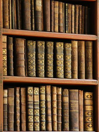 antique books: Antique books in the Library of Prague, Czech Republic.