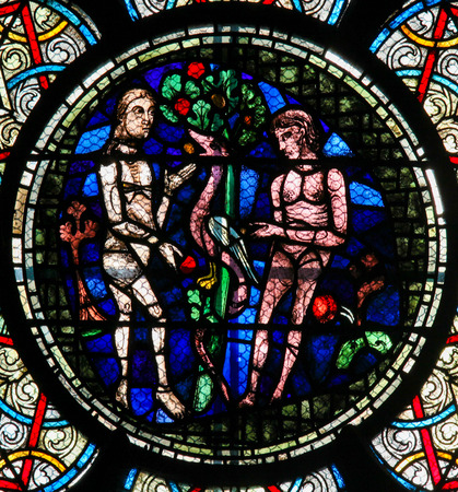 morality: Stained Glass in Notre Dame Cathedral of Paris depicting Adam and Eve and the Original Sin with the Forbidden Fruit.