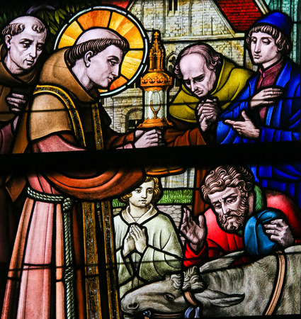 gent: Stained Glass window depicting Saint Anthony of Padua with the kneeling donkey in the Cathedral of Saint Bavo in Ghent, Flanders, Belgium.
