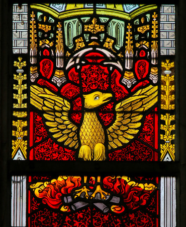 Stained Glass window depicting a Phoenix rising from the Ashes, in the Cathedral of Saint Bavo in Ghent, Flanders, Belgium.