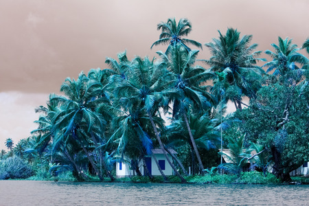 backwater: House in tropical surroundings near Allepey in the Kerala backwaters in South India Stock Photo