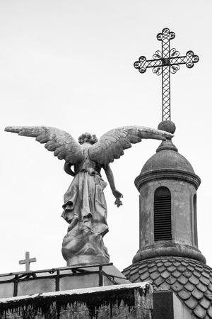 angel cemetery: Angel Statue in Recoleta Cemetery, Buenos Aires, Argentina.