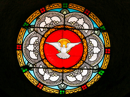 Stained Glass in the Church of Antibes, France, depicting a Dove, symbol of the Holy Spirit Stok Fotoğraf