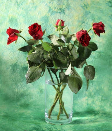 Bouquet of red roses in vase, on green background photo