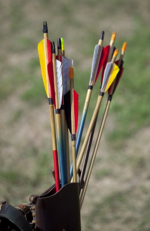 Arrow fletchings in different variation photo