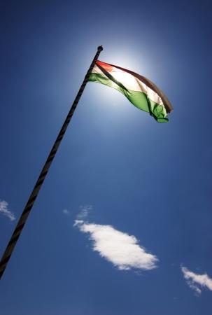 tricolour: Hungarian tricolour flying in full sunshine against blue sky