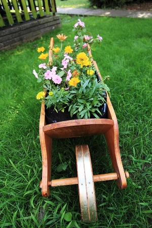 Wheelbarrow full of colorful flowers on a grass lawn Stock Photo - 15083328