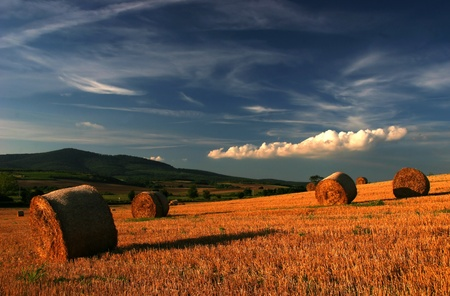 cirrus: Straw-field with bales ins sunset