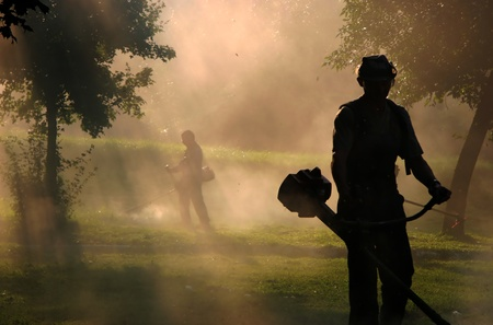 Workers cut the grass with strimmer in dust Foto de archivo