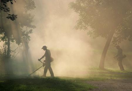 노동자들은 먼지 strimmer와 잔디를 잘라 스톡 콘텐츠