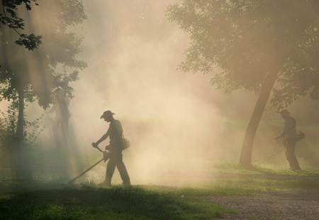 Workers cut the grass with strimmer in dust Archivio Fotografico