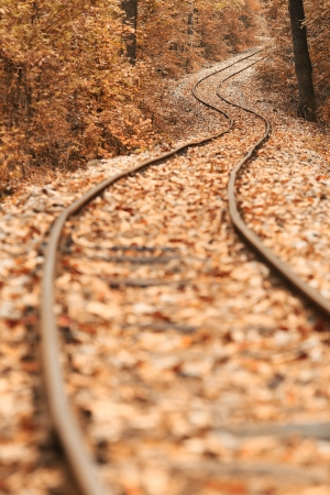 Train track covered with fallen leaves in autumn Stock Photo - 15689680