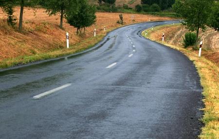 guard rail: Road after rain