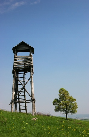 Lookout tower for hunters hidden in the forest