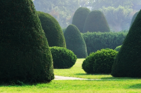 english garden: Well-kept bushes and trees in formal english garden