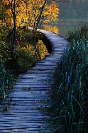 Wooden path in the Plitvice lakes  Plitvicka jezera  national park, Croatia, Europe  Season  autumn Stock Photo