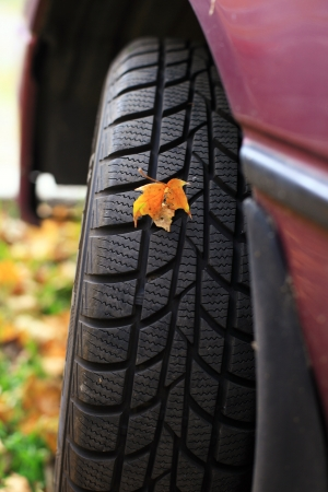 Car wheel tyre with leaf Stock Photo