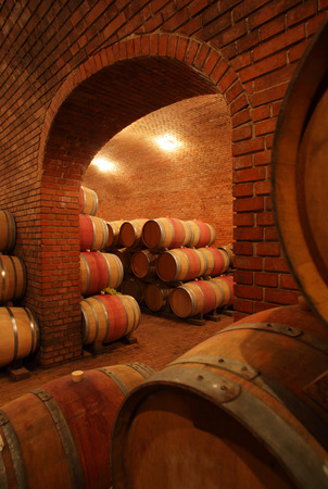 Wine barrels Foto de archivo