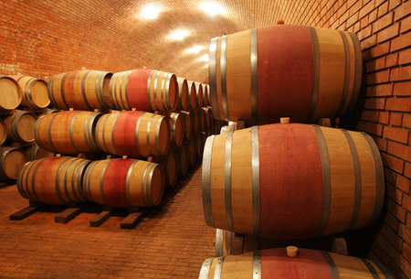 Wine barrels in wine-vaults in order photo