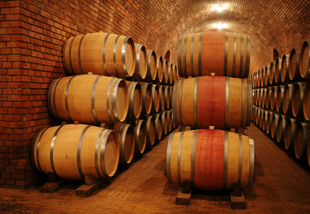 ferment: Wine barrels in wine-vaults in order
