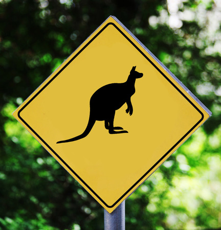 Yellow road sign outdoor with kangaroo pictogram photo