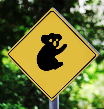 Yellow traffic label with koala pictogram photo