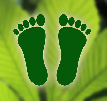 carbon footprint: Symbol of ecological footprint on green