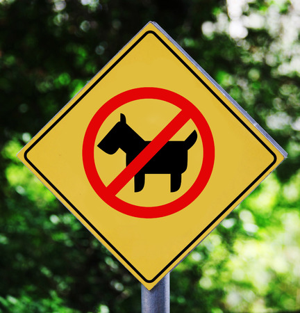 Yellow traffic label with dog pictogram photo