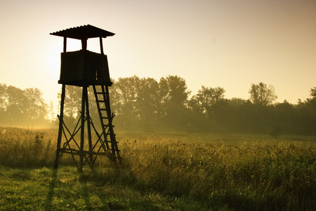 Lookout tower for hunting at dawn Stock Photo