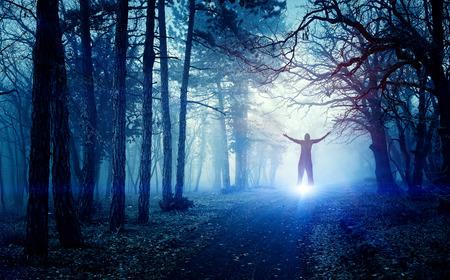 Spook in het bos Stockfoto