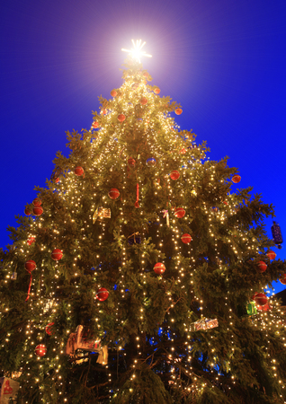 Outdoor Christmas Tree Images & Stock Pictures. Royalty Free ...