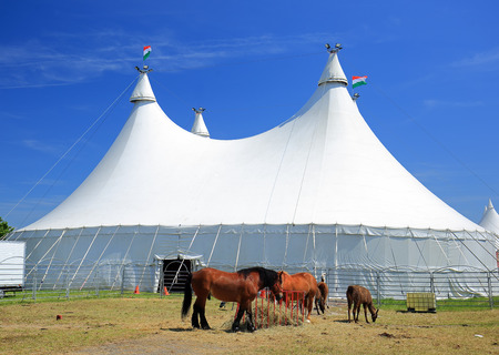 Huge white circus tent with horses