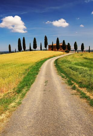 Beauty landscape in Tuscany, Italy