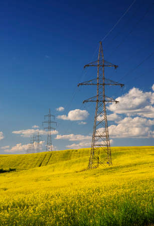 Rape field with high voltage electric towers