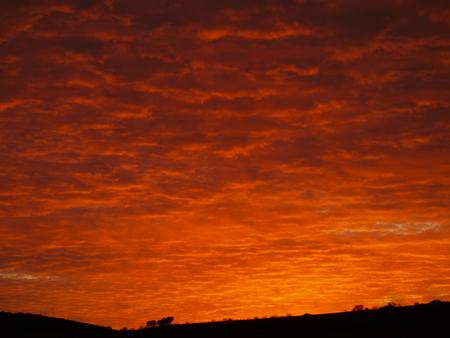 Red Sky 版權商用圖片