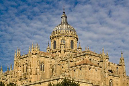 salamanca: Detail of Salamanca cathedral, Spain.